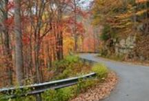 Road Trips / Southern Road Trips that won't Disappoint!