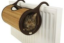 Design for Pets / by Homes And Hues