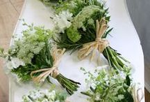 Colors: Green Wedding Ideas / Planning a green wedding (as in the color, not environmentally friendly)? Get some inspiration from our green wedding inspiration board post here: http://www.abrideonabudget.com/2015/02/green-wedding-inspiration-board.html. Check out all our Pinterest boards at http://pinterest.com/abrideonabudget.