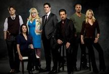 Criminal Minds / Don't they know we're a family?