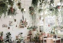 WINTERGARTEN / Einen Wintergarten zu besitzen ist ein Luxus, aber nicht immer. Denn auch dieser Raum gehört gepflegt und adäquat ausgestattet. Hier verraten wir unsere persönlichen Trendfavoriten: