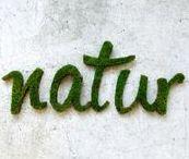 RASENTEPPICHE / Auf dieser Pinnwand zeigen wir euch unsere vielfältigen Rasenteppiche und dazu passendes Interieur.