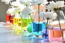 REGENBOGENPARADIES / Teppiche in Regenbogenfarben. Regenbogen wohin das Auge reicht! Für alle Freunde von farbfreudigen Mustern gibt es hier ein paar richtig coole Tipps, wie ihr eurem Zuhause mit einem Teppich und weiteren Wohn-Accessoires Farbe verleihen könnt.