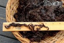 Locks: Mohair, Wensleydale, Teeswater, Alpaca and more! / Locks from angora goats and wensleydale and teeswater sheep -- great long locks for spinning yarn or making doll hair. This board also showcases Border Leicester, Lincoln Longwool, Suri Alpaca, Finnsheep, and other longwool breeds.
