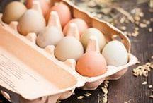 Æggebilleder / Billeder og fotos af æg
