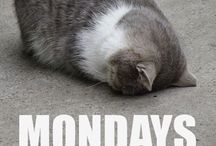 Monday / Monday. Poor Monday. I just have fun making fun of it.
