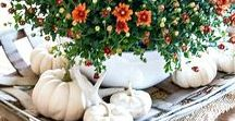 All About Fall / Everything Fall & Entertaining
