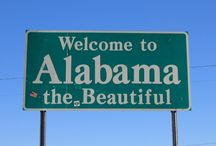 Alabama the beautiful  / by Laurie Burttram