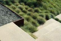 Garden / Giardini / by Luca Buttafava