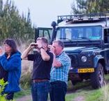 Safari de Grote Vijf met Discover 4x4 / Safari's in Nederland. Beleef het met Staatsbosbeheer in samenwerking met Discover 4x4. Besloten groepen kunnen boeken bij Discover4x4 (www.discover4x4.nl)