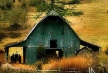 Barns and Greenhouses / History of an animal or a seed, then sheltered in a beautiful edifice.