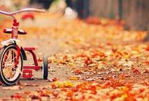 Seasons | Fall for Autumn / Images + inspiration for autumn