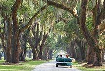 Travel   Southern USA