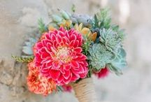 Pink and Coral wedding flowers / wedding flower designs ideal for pink wedding themes and also coral theme weddings. These Pretty colours work well for modern weddings and any style including whimsical to elegant and country for designs.