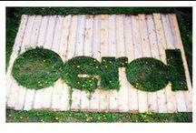 Oerol / De schepen van Rederij Vooruit brengen je ook naar Oerol op Terschelling. Zo heb je én je vervoer maar ook je verblijf direct geregeld!  Huur met een groep je eigen schip, dit is al mogelijk vanaf 8 personen. Vanaf Harlingen zeil je dan exclusief met jouw groep naar Terschelling.  Er zijn ook individuele arrangementen, bekijk onze website voor de mogelijkheden www-rederij-vooruit.nl
