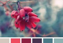 Color Schemes / Because who doesn't a love a good color scheme