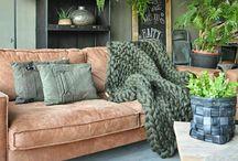 HOME COLOR Khaki -Armygreen
