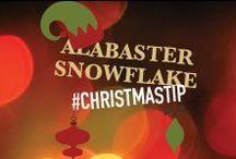Alabaster Snowflake's Christmas Tips / Santa's head elf, Alabaster Snowflake, has provided some of his favorite #ChristmasTips for the season! #Christmas #NPX #ChristmasTime