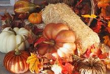 Fall Decorating Ideas / We've got some great decorating ideas to help get you in the mood for fall.