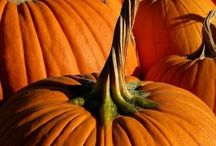 Fall Decorating Ideas / Creative, budget-friendly ideas to celebrate autumn, Halloween or Thanksgiving.  Do-It-Yourself ideas for decorations for the home- on the front porch, in the front yard, inside the home, and at the fireplace.