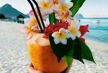 « Aloha ! »
