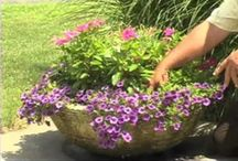 """VIDEOS: Containers / """"Gardener's Corner"""" YouTube videos produced by the University of Illinois Extension."""