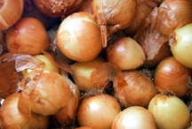 """VIDEOS: Bulbs / """"Gardener's Corner"""" YouTube videos produced by University of Illinois Extension."""