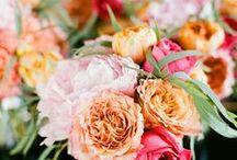 wedding inspiration / by Ilze Amola