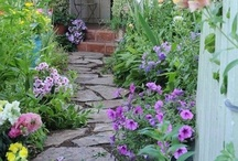 Cottage Gardens / by June Jenison
