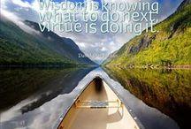 Wisdom Quotes / Quotes About Wisdom