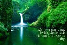Quotes About Beauty / Beautiful Quotes, Beauty Quotes