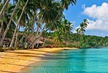 Reach the Beach and Holidays