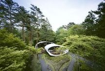 Landscape ideas / Extreme creative projects for the gardens