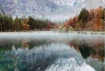 Seasons / spring, summer, fall and winter...