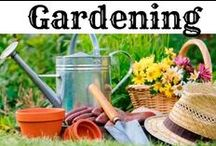 ❤ Gardening Ideas & DIY / Community collection of the best Gardening Ideas, DIY tips, design, fairy garden ideas vintage gardens, herb gardens, container gardening for flowers and vegetables, raised gardens, patio gardening, and more for beginners and experienced gardeners.