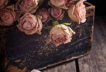 Vintage - Flowers