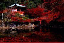 JAPON Y COREA.MIs recuerdos