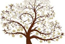 << genealogy >> / by jammmb!