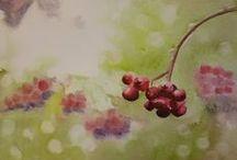 aquarel & drawing & art / kreslení akvarelovými pastelkami, tužkami nebo jen vodovkami, pastely  apod.