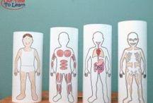 Lidské tělo, hygiena, výživa