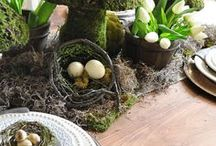 Wheel of the Year: Ostara/Spring Equinox / Ostara festivities and celebrations.