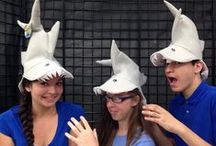 Sharks and The Sea / Sea Creatures and how to throw great parties with all the supplies you need or could have imagined existed, from Alin Party Store: Lakewood, Riverside, CA
