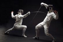 Fencing & armor /