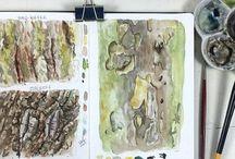 Herbst  | Skizzenbuch Inspiration / Skizzenbuch Ideen, Tipps und Motive für den Herbst. Naturskizzenbuch (nature journaling) im Herbst