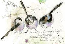 Skizzenbuch - Vögel / Skizzenbuch Inspiration und Motive rund um Vögel und Federvieh. Naturskizzenbuch Ideen