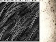 .............. Cendres .............. / couleurs . gris . noir . cendre . lin