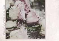 ............  Roses Poussière   ............... / couleurs .  rose . poudré . fané .beiges. ficelle . blanc . lin