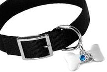 Pet Jewelry and More! / Find cute pet meme's, plus medical and custom engravable pet jewelry for dogs, cats, and more!