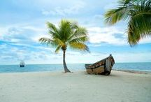 Florida Keys Disease / Florida Keys Travel & Tourism