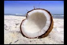 I Love Coconut Oil / Heard all the buzz and now want to know what are the benefits of coconut oil? www.coconut-oil-benefits.net